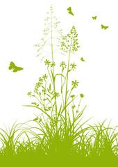 Blumenwiese, Pflanzen, Gras, Wiese, Feldwiese, Sommer, Frühling