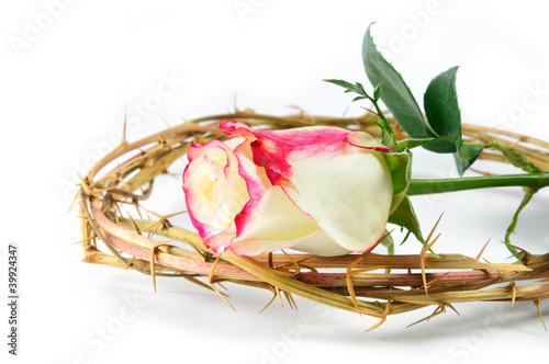 crown of thorns and rose
