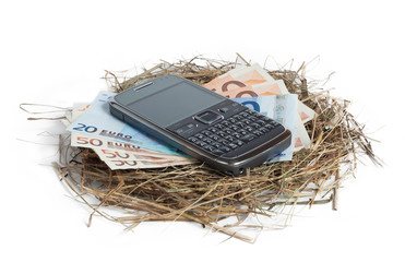 Money and phone in nest isolated on white