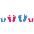 footprint_family_2c