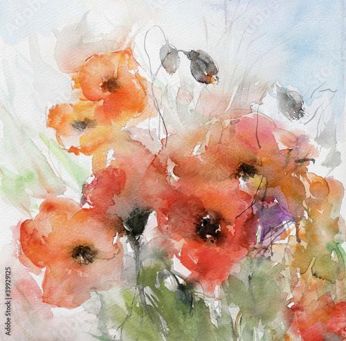 mohnblumen mit kapseln © bittedankeschön