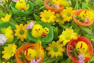Pulcini pasquali - primavera