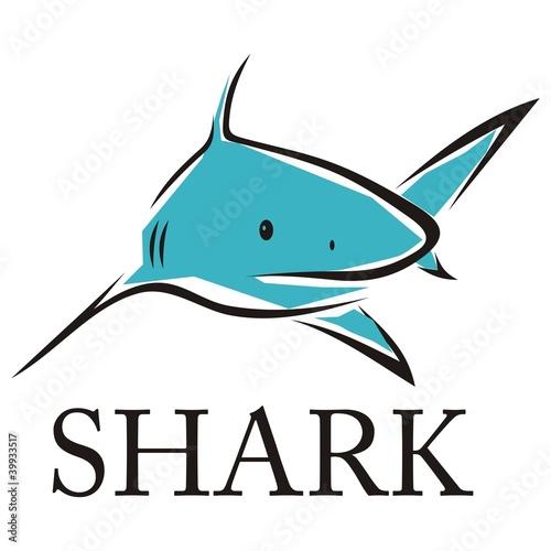 shark001