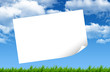 Blank paper, green grass and blue sky