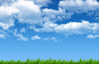 Green grass with beautiful blue sky