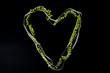 Galon cœur