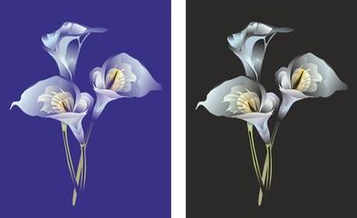 """Three stylized flowers of a calla"""