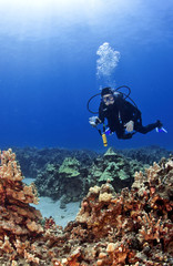 Scuba Diver with a Camera in Kona Hawaii