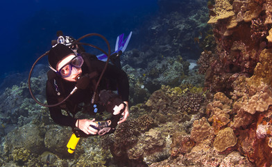 Diver checking out the Coral in Kona Hawaii