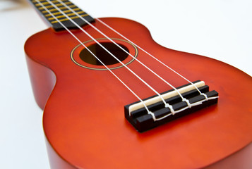 hawaiian traditional instrument ukulele