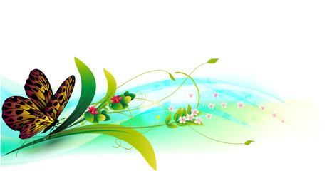Primavera con farfalla Background