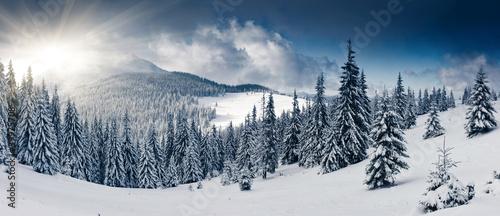 Winter - 39975708