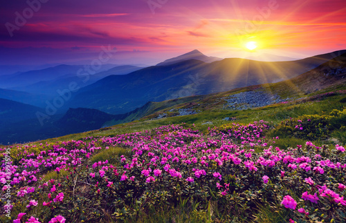mountain landscape - 39975795