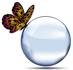 Sfera con farfalla
