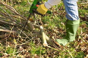 Gartenarbeit, Baumschnitt, Gartensaison, Motorsäge
