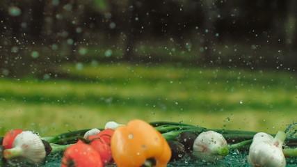 овощи для салата под дождем