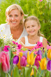 Mother with daughter working in flowers garden