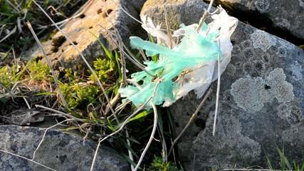 Plastikmüll aus Kunststofftüten in Naturlandschaft