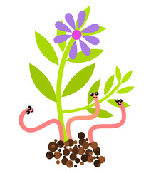 Worms and flower