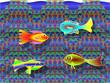 Fische Aquarium