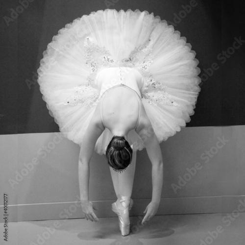 Ballet Dancer - 40012177
