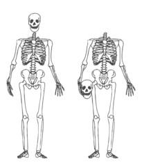 Squelette - tête sous le bras