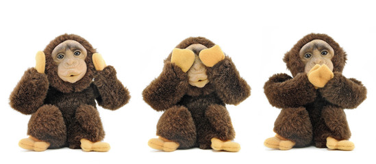 See no evil, hear no evil, speak no evil ...