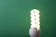 An energy-saving bulb, isolated on green