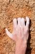Climbing hand grip on rock