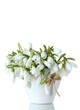beautiful bouquet of snowdrops in vase with bow isolated