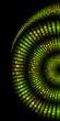 green skin of snake