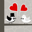 Bird of love3