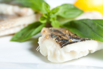 Pike Perch Fillet with Basil closeup