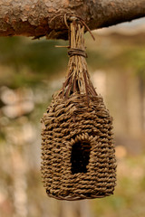 Nature friendly knitted bird house at the brach of the pine tree
