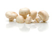 white mushrooms on a white background