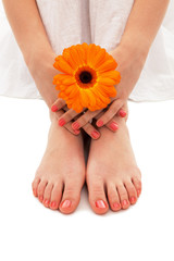 Woman hand and feet with manicure and  flower