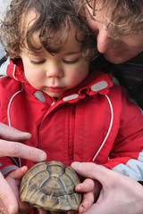 father showing a turtle to his son