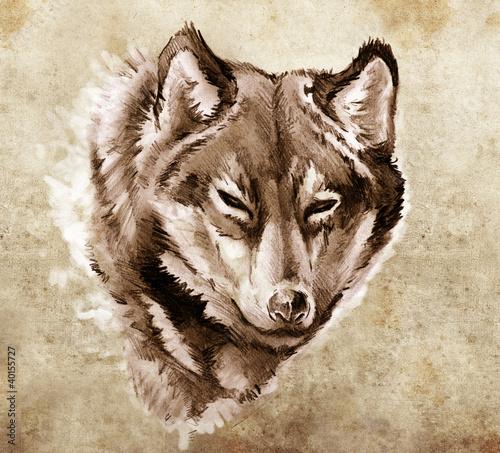 Fototapeta Szkic tatuaż sztuki, Ilustracja głowy wilka