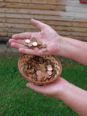 Donation coins 2