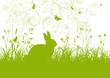 Ostern, Osterhase, Kaninchen, Garten, Kräuterwiese, Wiese, Gras