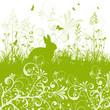 Ostern, Floral, Pflanze, Osterhase, Kaninchen, Garten, Wildwiese