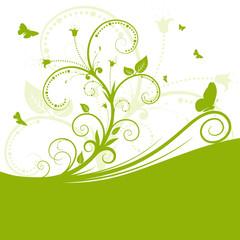 Hintergrund, abstrakt, grün, Frühling, Flora, geschwungen, Stil