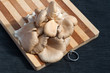 Oyster Mushrooms on a cutting board