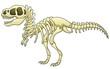 Tyrannosaurus skeleton image