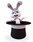Fototapety Bunny