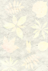 Abstract background with leaf