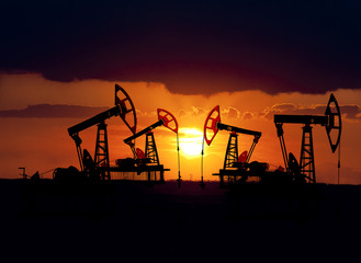Collage. Oil field at sunset.