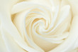 A close-up of a white rose