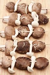 mushroom skewered