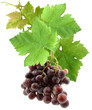 grappe de raisin rose avec feuilles de vigne